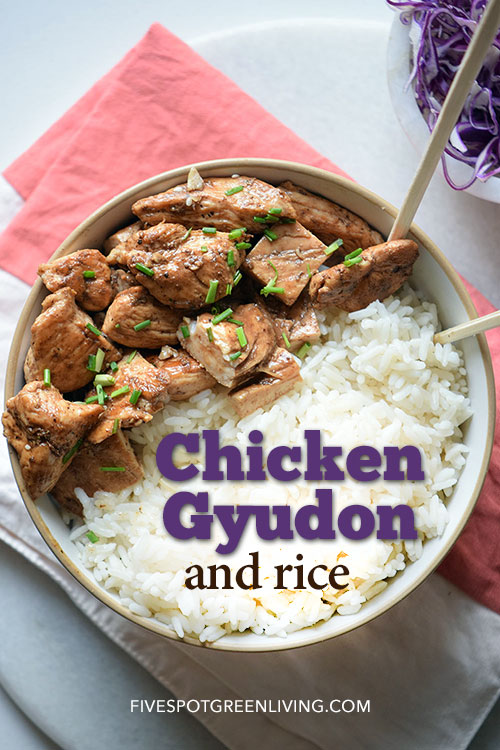 Healthy Recipes at FiveSpotGreenLiving.com / Chicken Gyudon with Rice