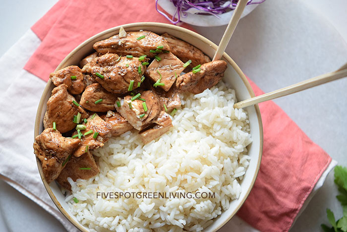 Asian Chicken Gyudon with Rice