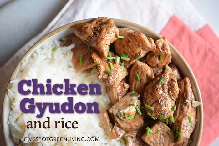 Healthy Recipes: Chicken Gyudon with Rice