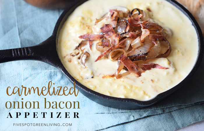Onion Bacon Dip Appetizer Recipe