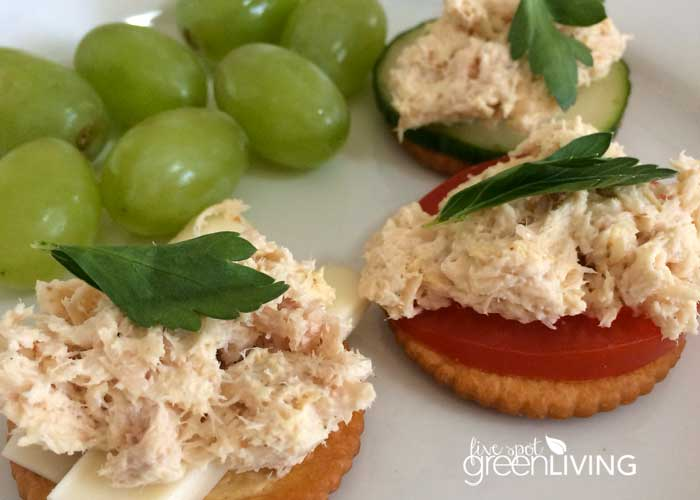 Tuna salad ideas