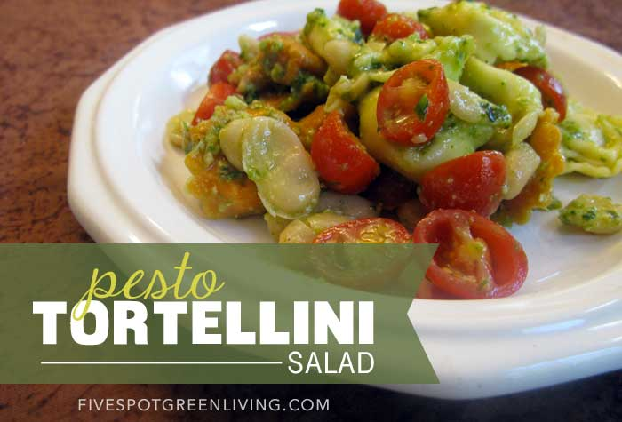 Healthy Recipes: Basil Pesto Tortellini Salad