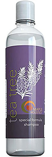 blog-shampoo-maple-holistics The Best Sulfate Free Shampoo for Men for Strength and Growth