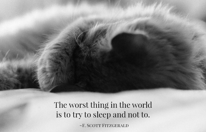 blog-sleep-cat-quote How Do You Sleep? Natural Ways to Get the Zzzzs