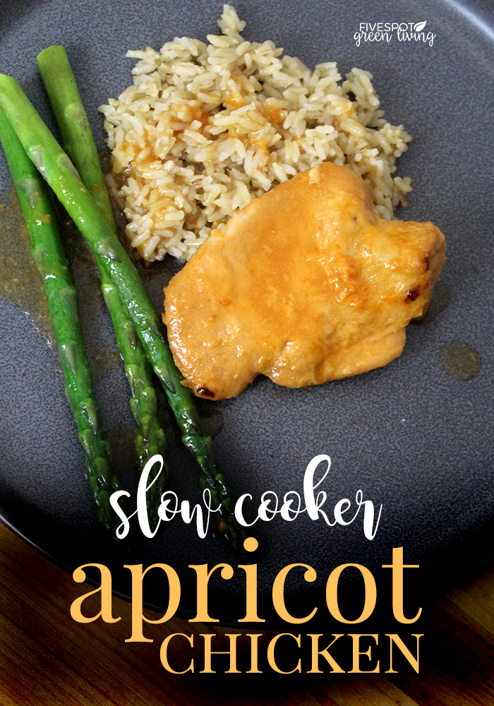 Healthy Recipe Easy Slow Cooker Apricot Chicken