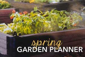 blog-spring-garden-planner-300px Container Gardening
