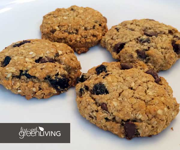 Healthy Snacking Resolution with Oatmeal Date and Chocolate Chip Cookies