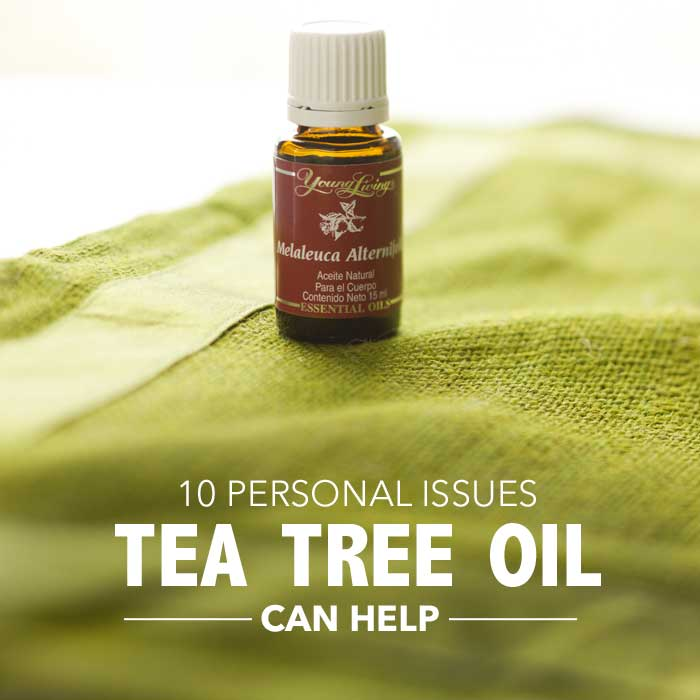 10 Personal Uses Tea Tree Oil Can Help