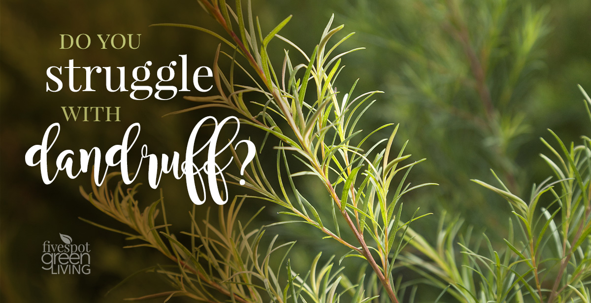 How to Use Tea Tree Oil for Dandruff and Itchiness