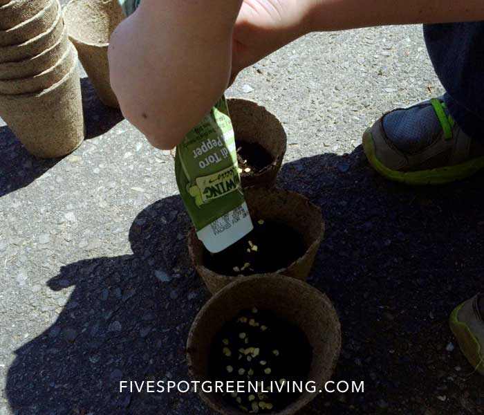 Vegetable Garden Planning with Organic Seeds