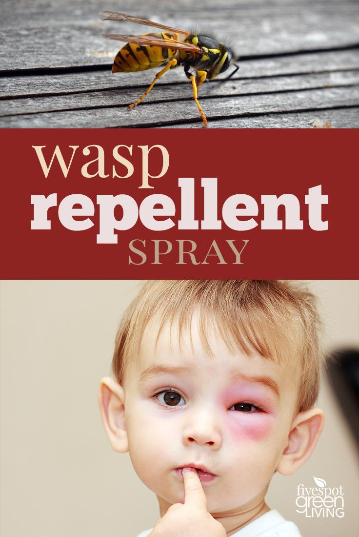 Natural Wasp Repellent Recipe