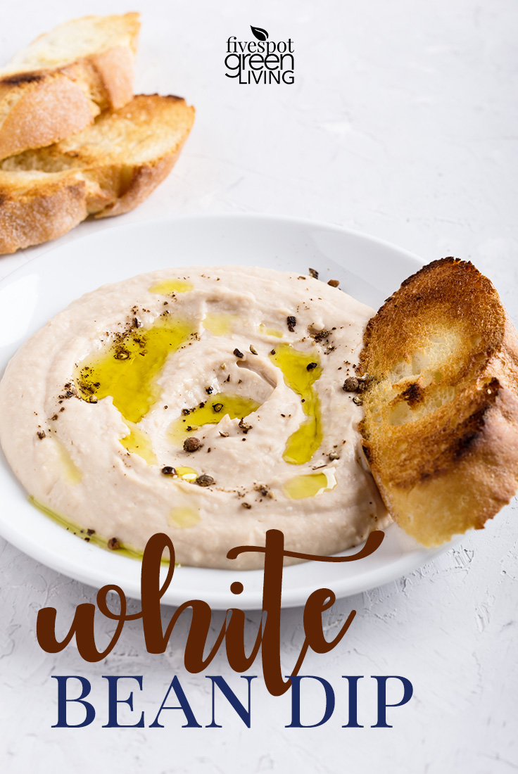 Delicious white bean dip pairs wonderfully with pita chips and a sparkling drink!