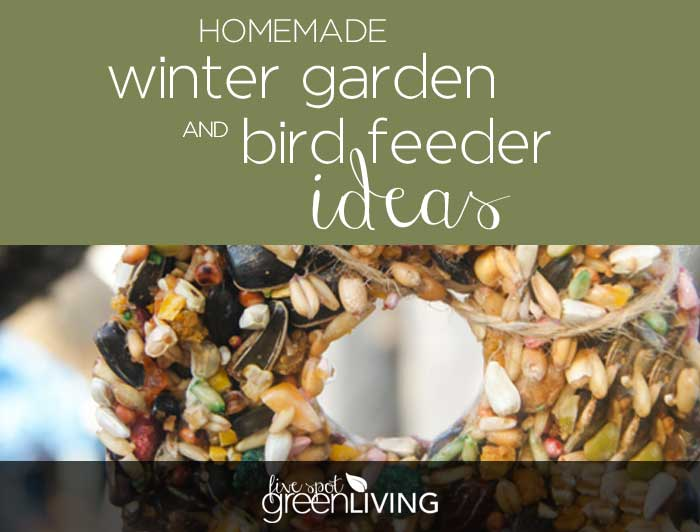 Homemade Winter Garden and Bird Feeder Ideas