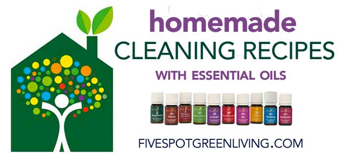 Homemade DIY Cleaning Recipes with Essential Oils Event