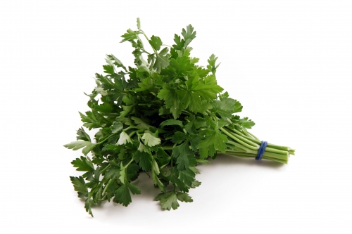 s_parsley Container Gardening with Kids