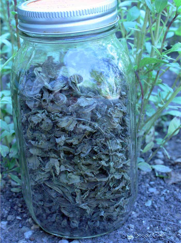 Drying Fresh Herbs to Use in Winter - Homemade Winter Garden and Birdfeeder Ideas