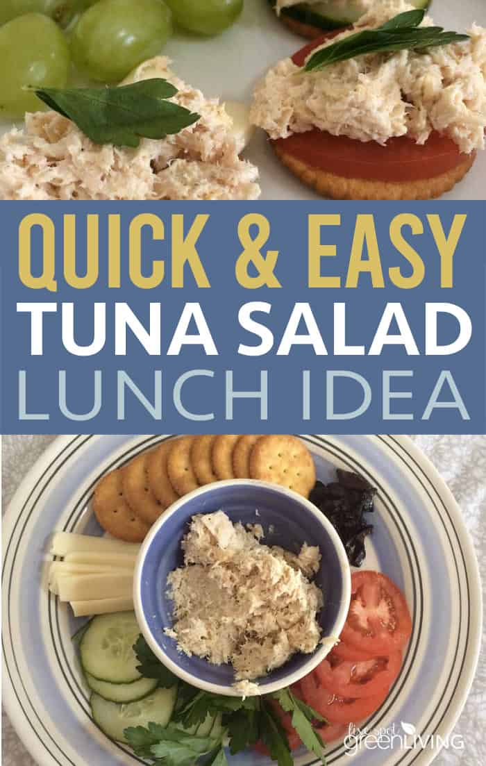 Quick and easy tuna salad lunch idea for kids
