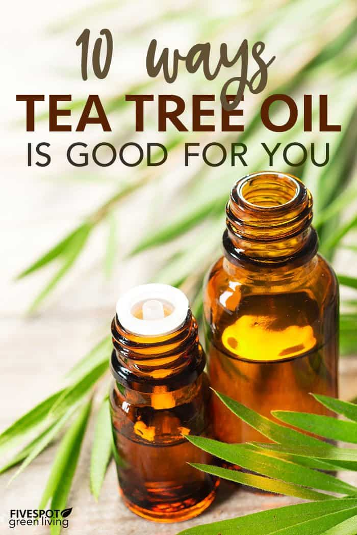 10 ways tea tree oil is good for you