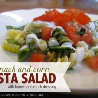 Santa Fe Pasta Salad