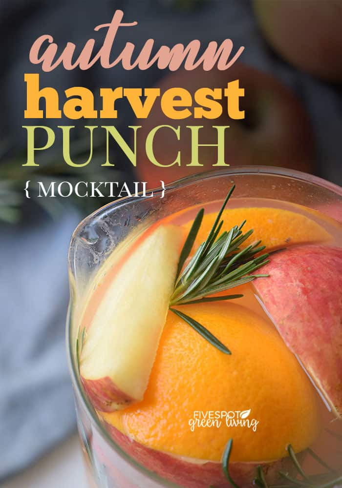 fruity fall mocktail for kids