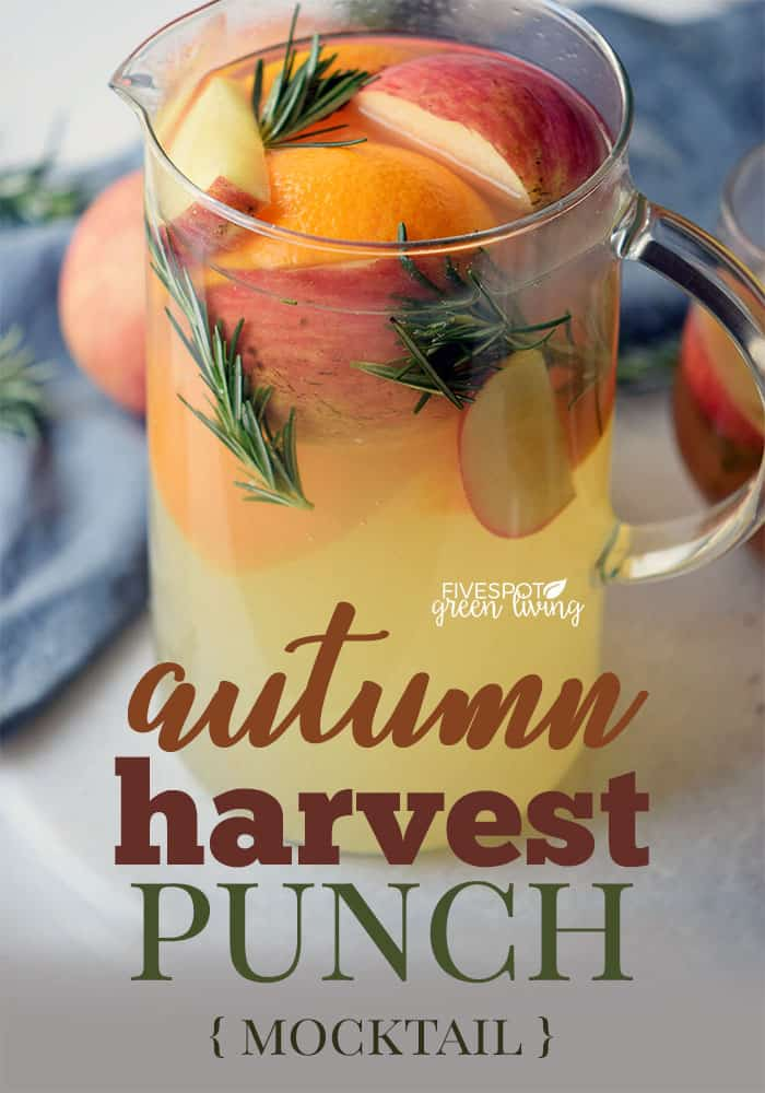 fruity autumn harvest punch mocktail