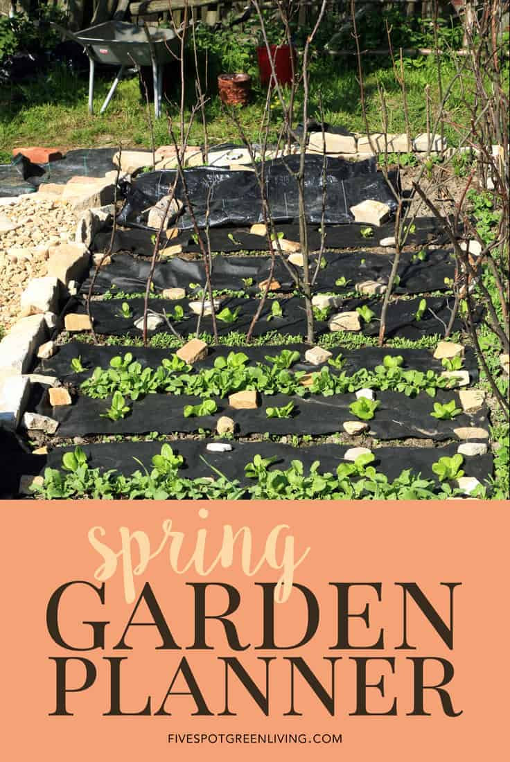 garden planner  spring planting guide