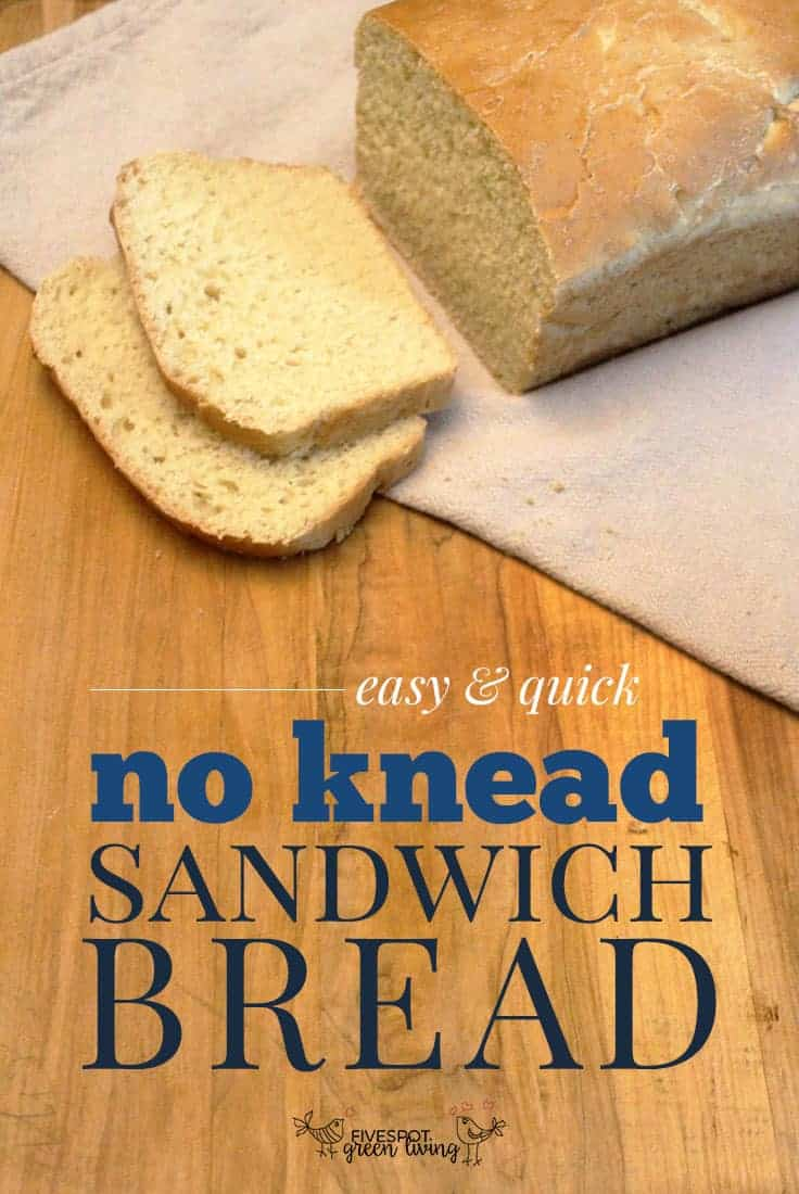 Easy Kid Friendly No Knead Homemade Bread Recipe - Five ...