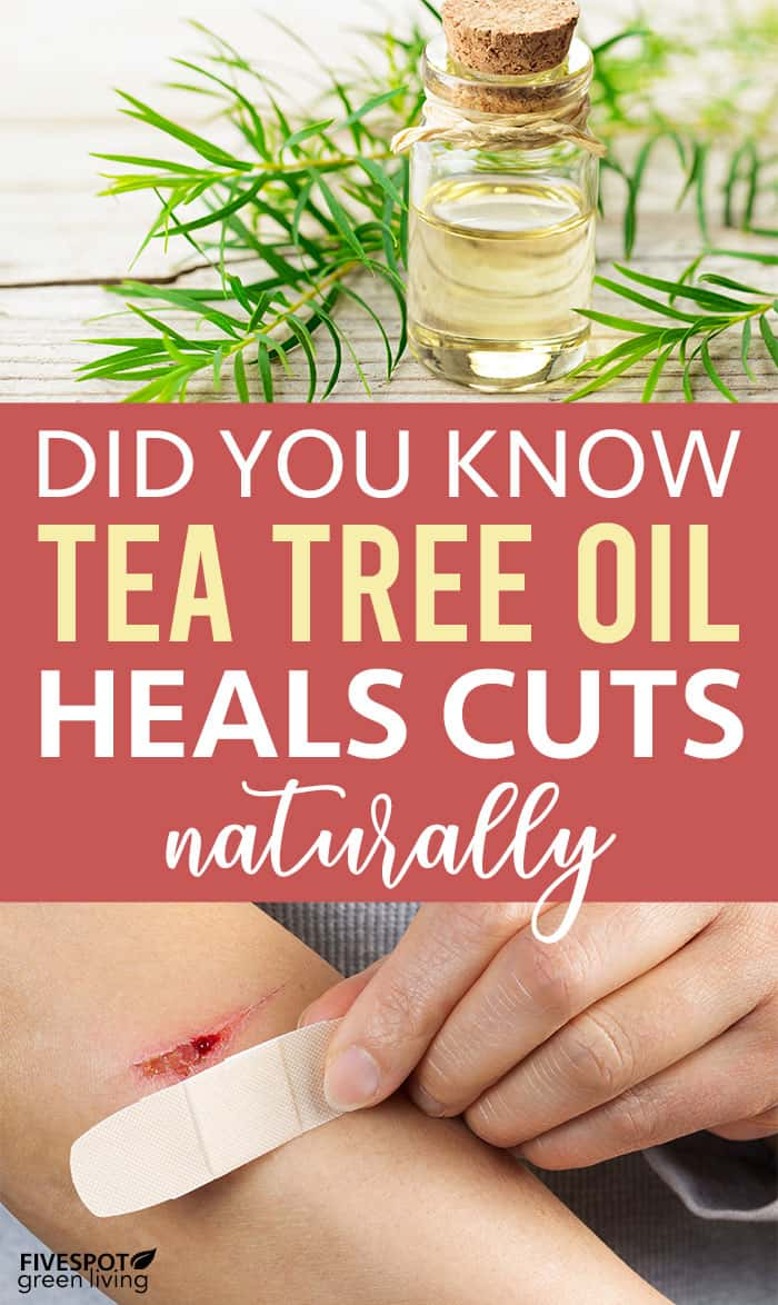 tea tree oil for cuts and scrapes