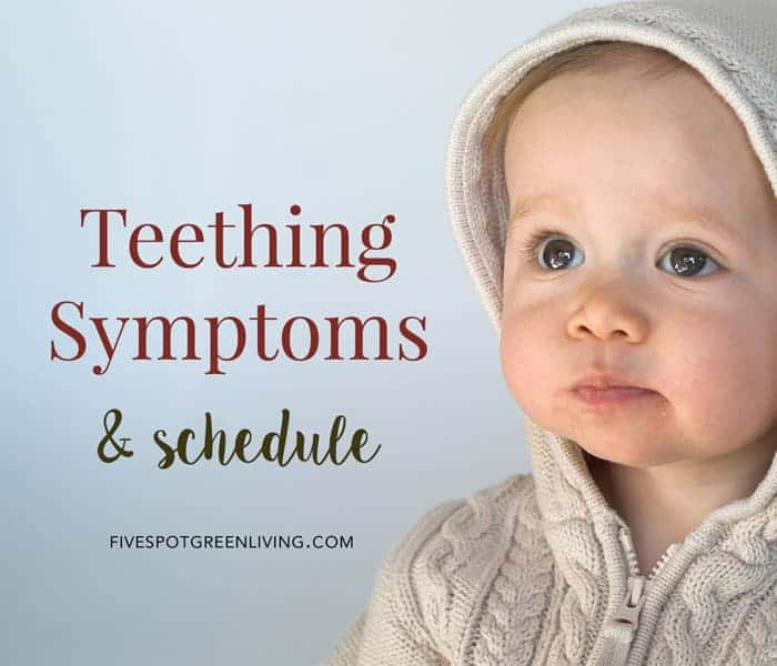 teething symptoms and schedule