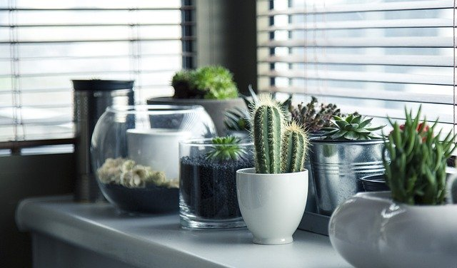 pots-716579_640 10 Decluttering Tips to Use Today