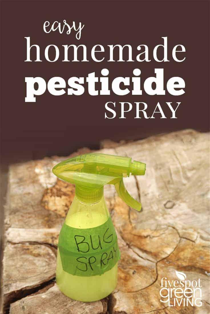 How To Make Your Own Homemade Pesticide Spray Five Spot Green Living