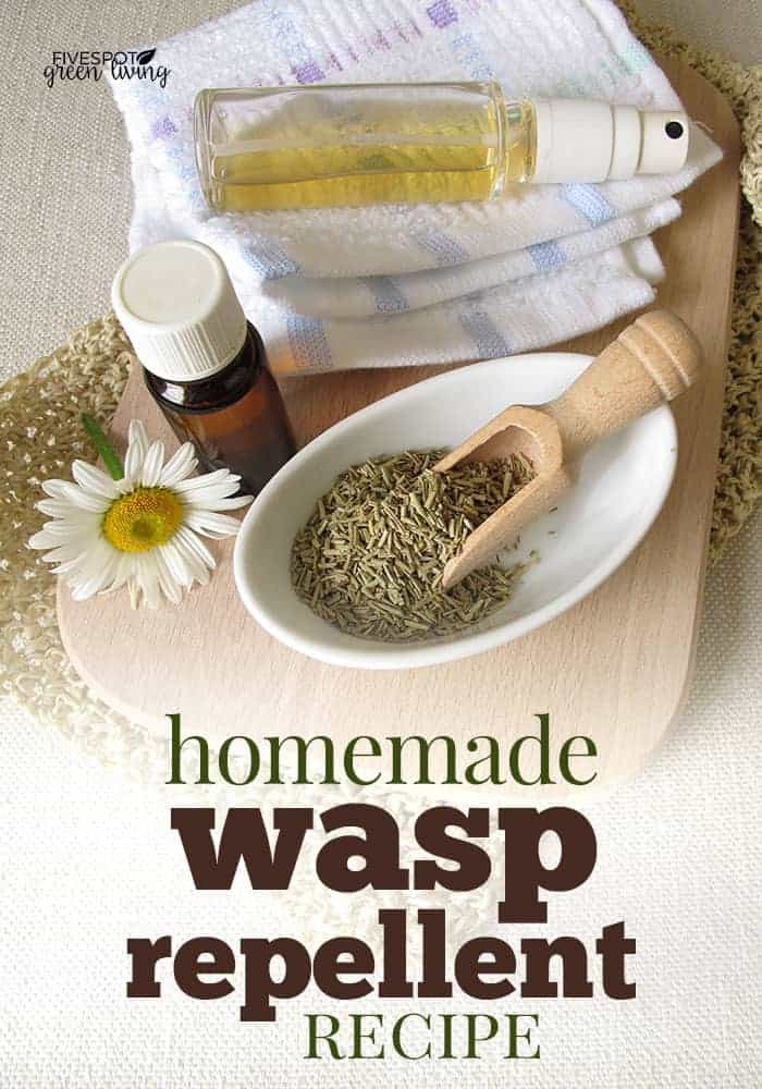 homemade wasp repellent
