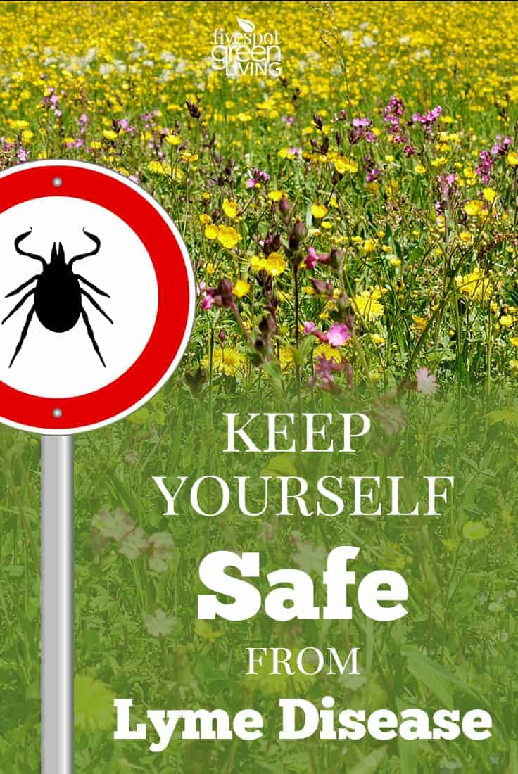 how to keep yourself safe from lyme disease