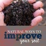 natural ways to improve soil
