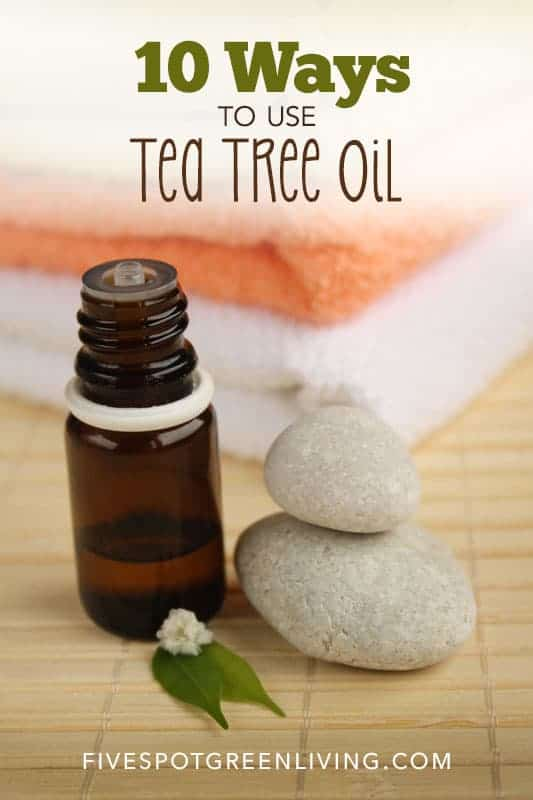 10 Amazing Tea Tree Essential Oil Uses