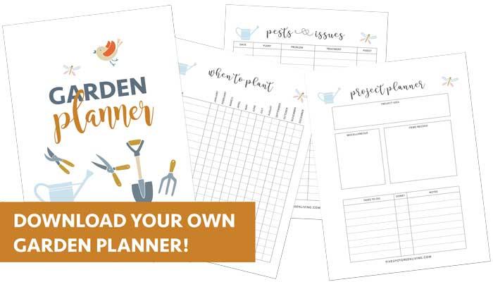 garden planner spring planting layout