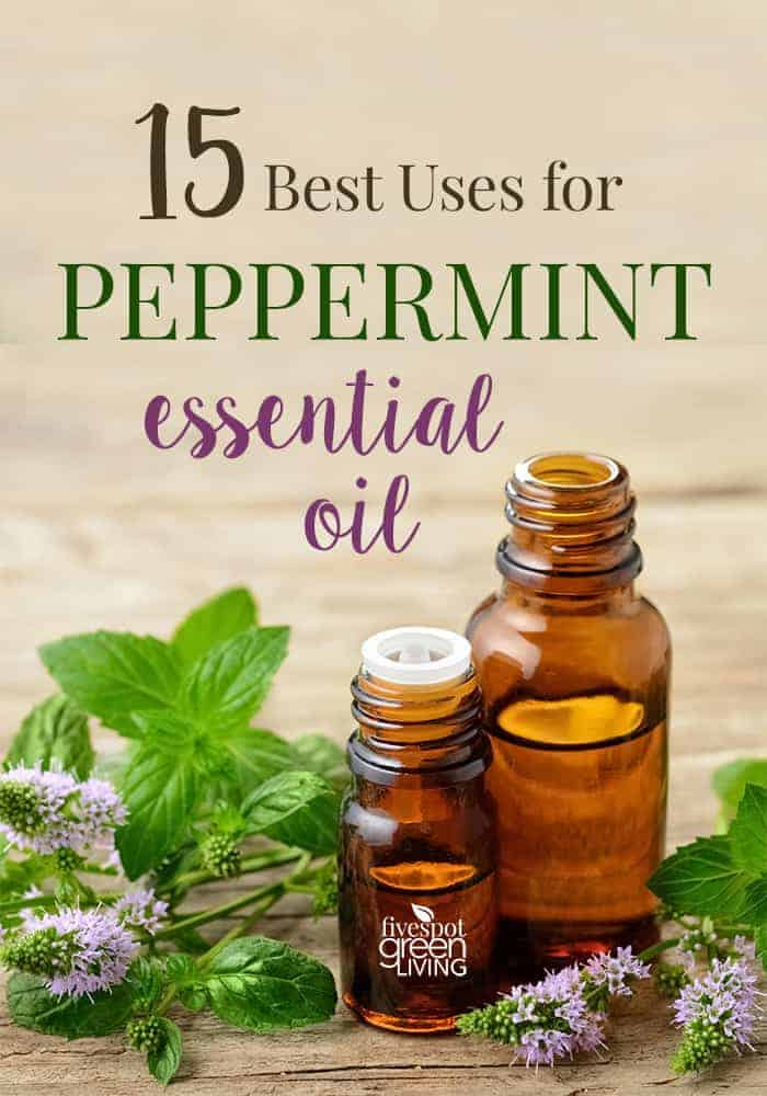 blog-peppermint-essential-oil-uses 50 Amazing Uses for Peppermint Oil
