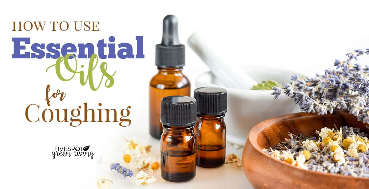 essential oil for coughs