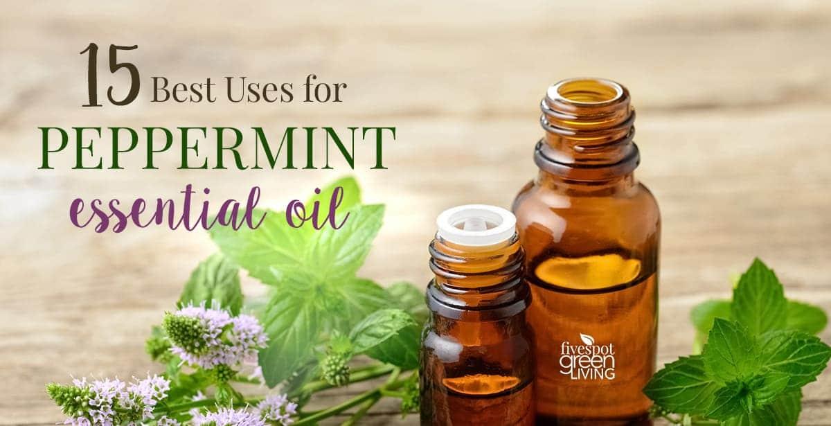 blog-peppermint-essential-oil-uses-FB 10 Amazing Ways to Use Tea Tree Oil