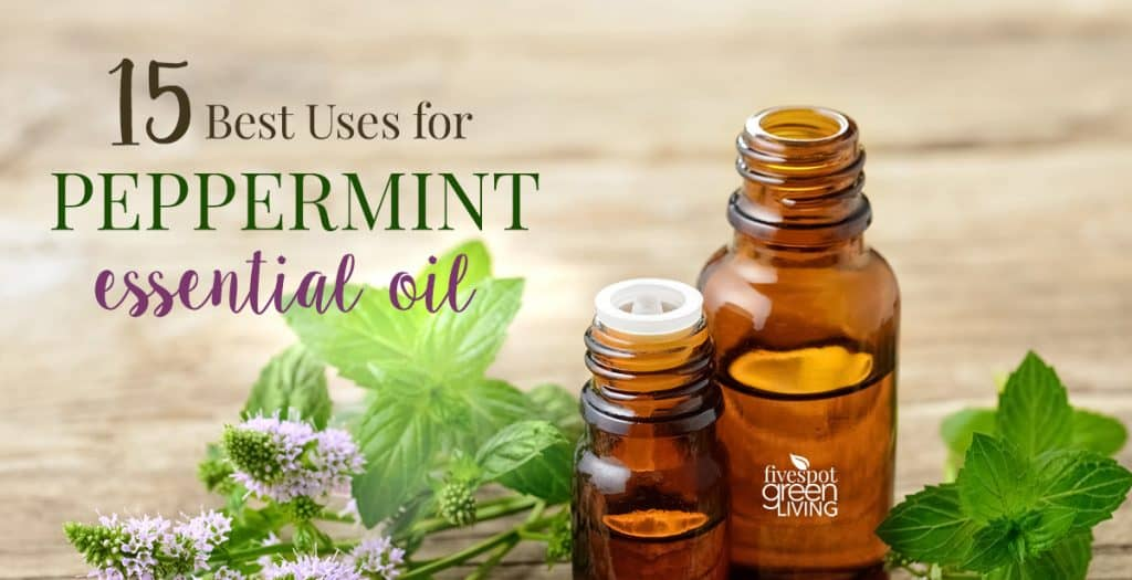 blog-peppermint-essential-oil-uses-FB-3-1024x525 Why Use Peppermint Oil for Wasp Control