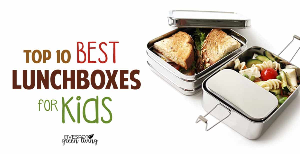 best lunchboxes for kids school