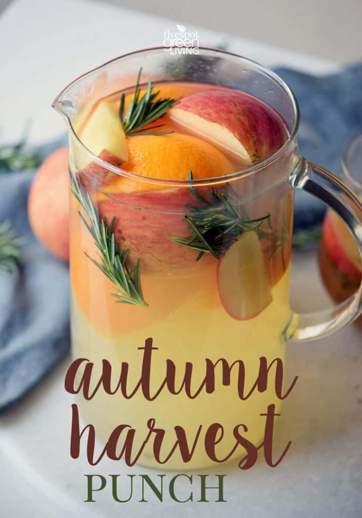 autumn harvest punch with fresh fruit