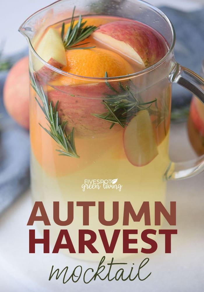 blog-autumn-harvest-punch-PIN5 Fruity Nectarine Seltzer Mocktail Recipe