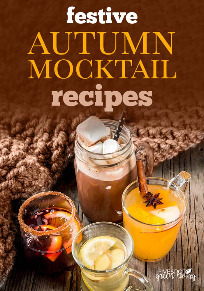 festive autumn mocktails drink recipes