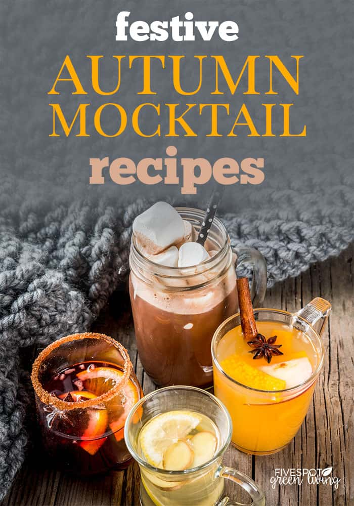 festive autumn mocktails recipes