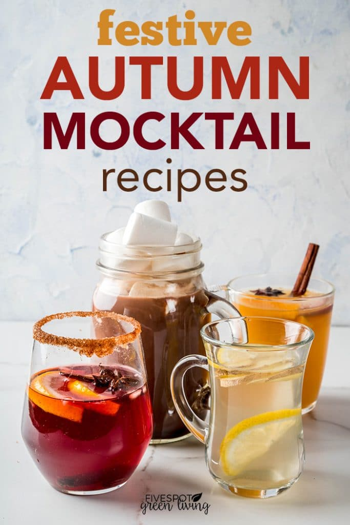 Festive and fun autumn mocktail drink recipes