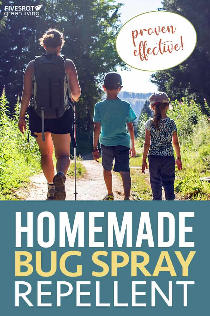 Homemade bug repellent spray