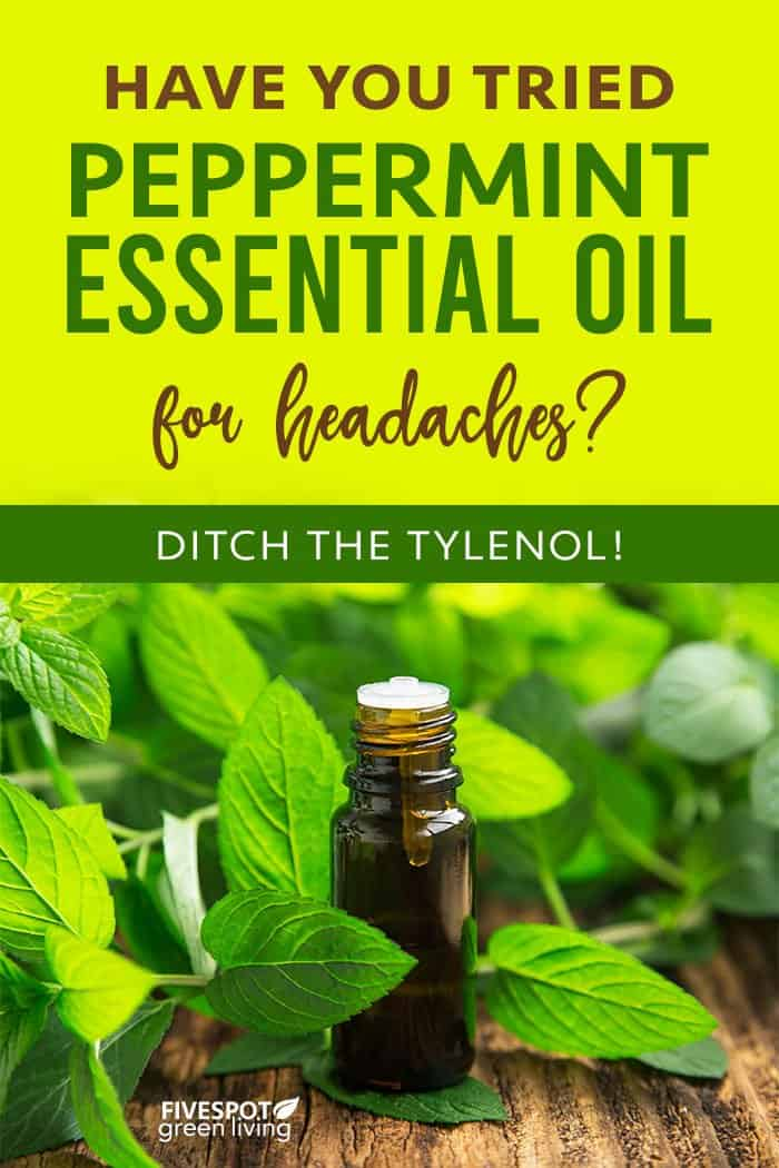 Use peppermint oil for headaches and migraines