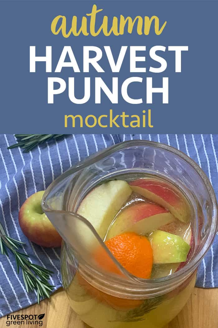 delicious fall punch