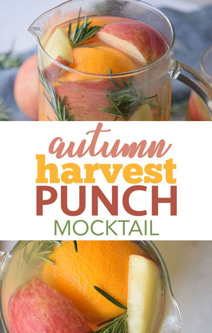 Fruity autumn harvest punch mocktail for Thanksgiving is delicious cold or warm in a slow cooker!